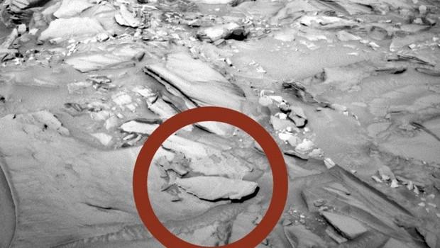NASA Mars'ta Balık Fosili Görüntüledi