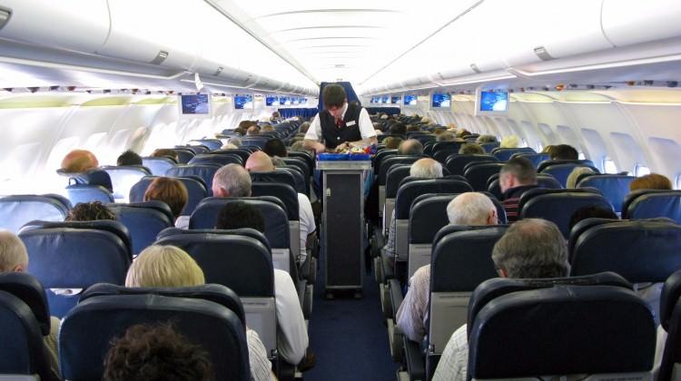 Uçak Fareleri Yolcuların Korkulu Rüyası!
